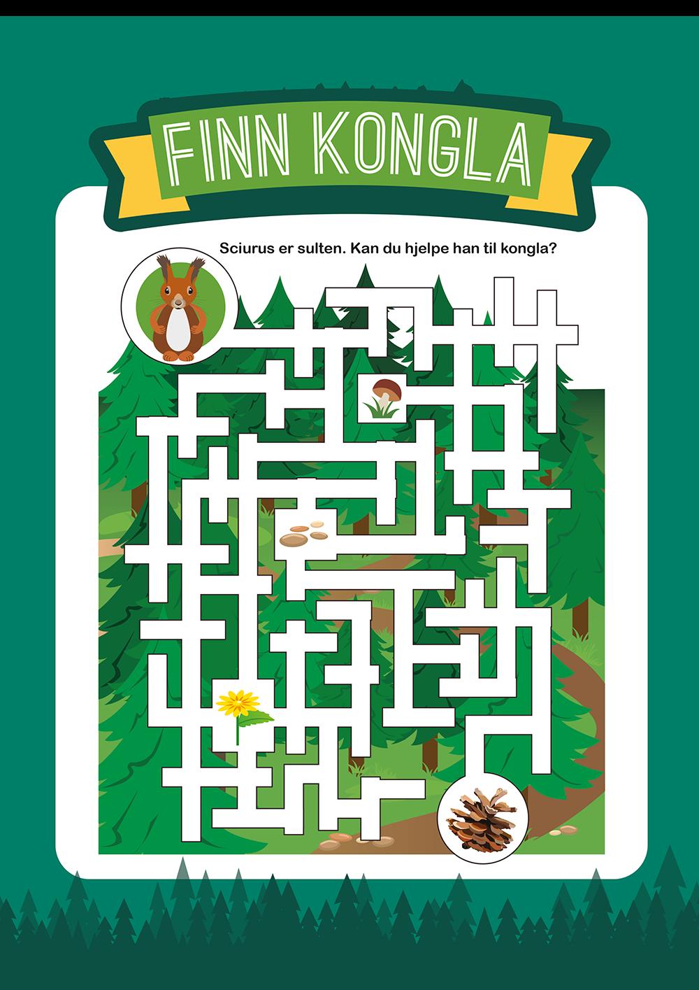 Finn kongla